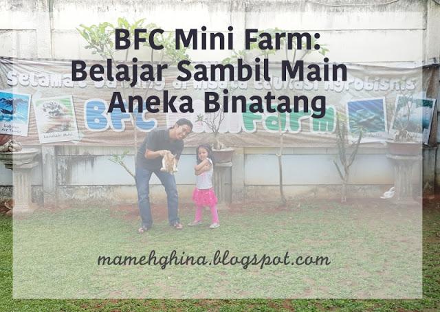 BFC Mini Farm