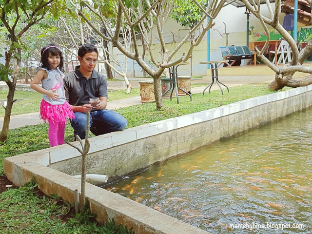 BFC Mini Farm : Ikan